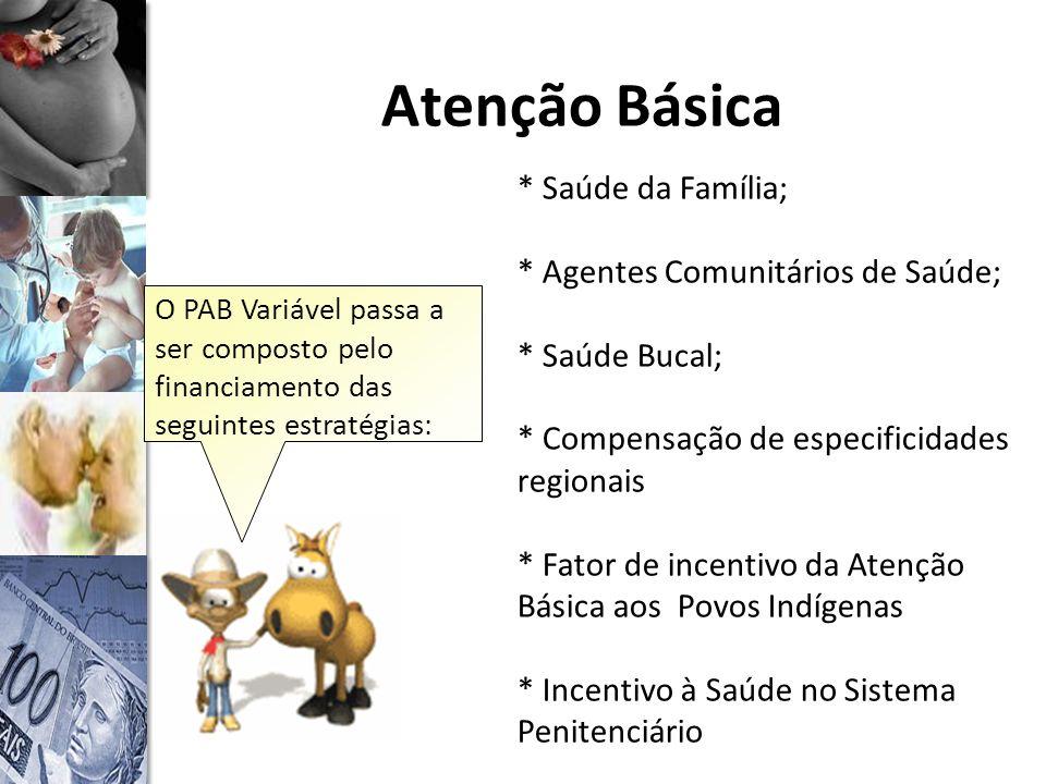 Atenção Básica * Saúde da Família; * Agentes Comunitários de Saúde;