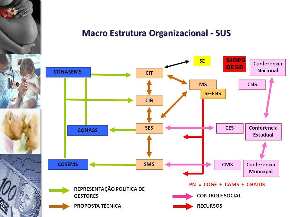 Macro Estrutura Organizacional - SUS Conferência Municipal