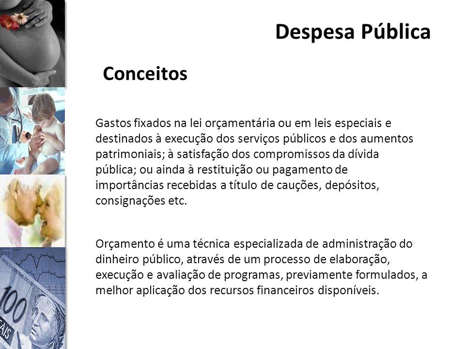 Despesa Pública Conceitos