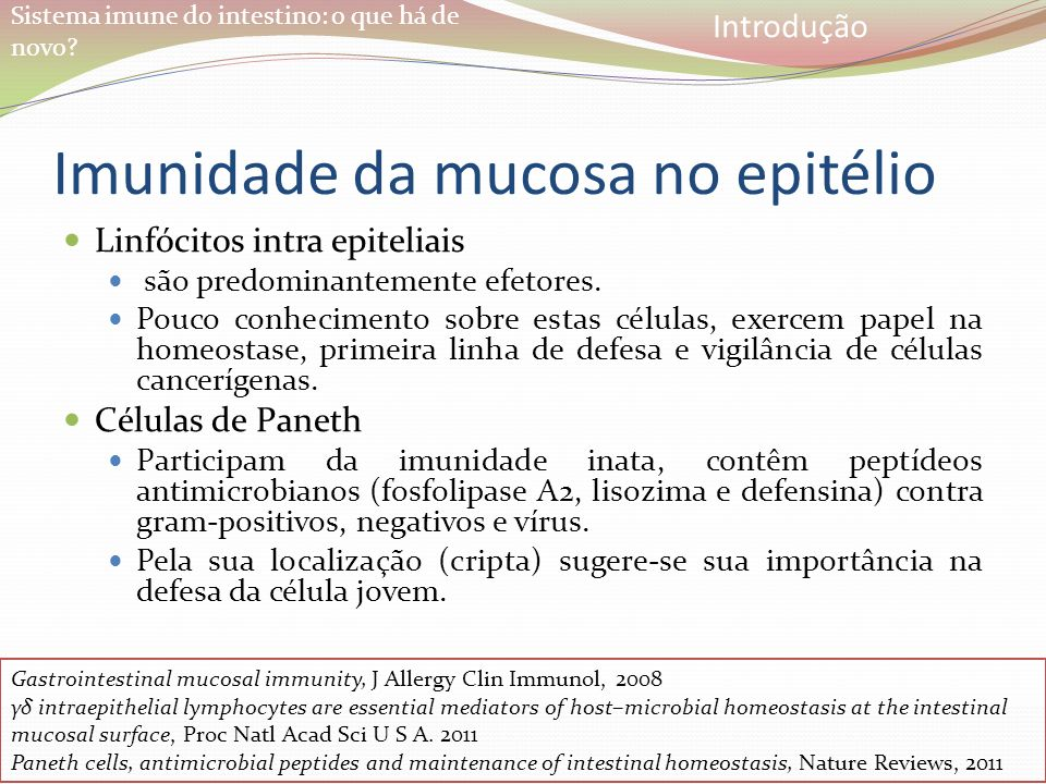 Imunidade da mucosa no epitélio