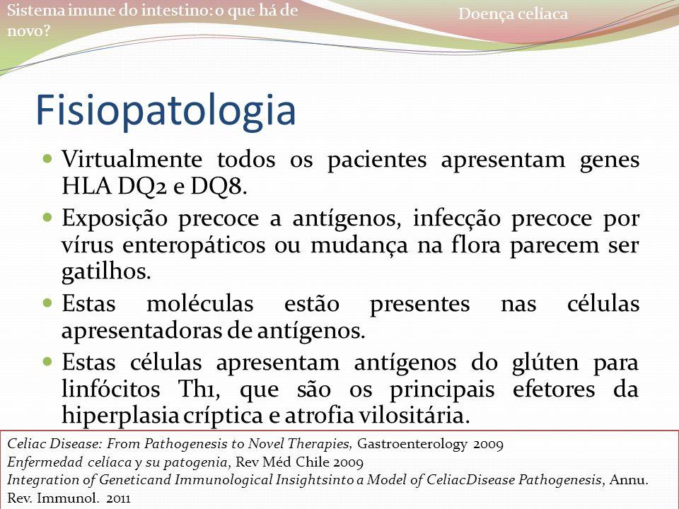 Doença celíaca Fisiopatologia. Virtualmente todos os pacientes apresentam genes HLA DQ2 e DQ8.