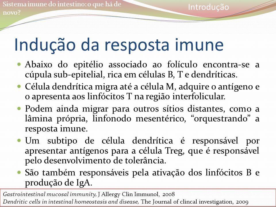 Indução da resposta imune