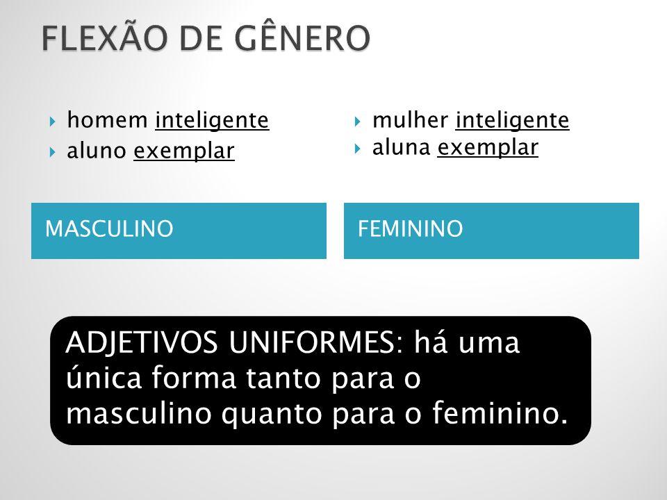 FLEXÃO DE GÊNERO homem inteligente. aluno exemplar. mulher inteligente. aluna exemplar. MASCULINO.