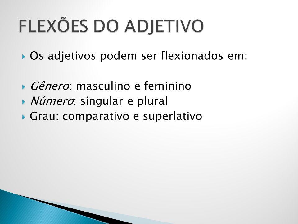 FLEXÕES DO ADJETIVO Os adjetivos podem ser flexionados em: