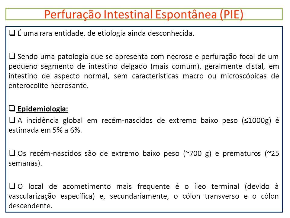 Perfuração Intestinal Espontânea (PIE)