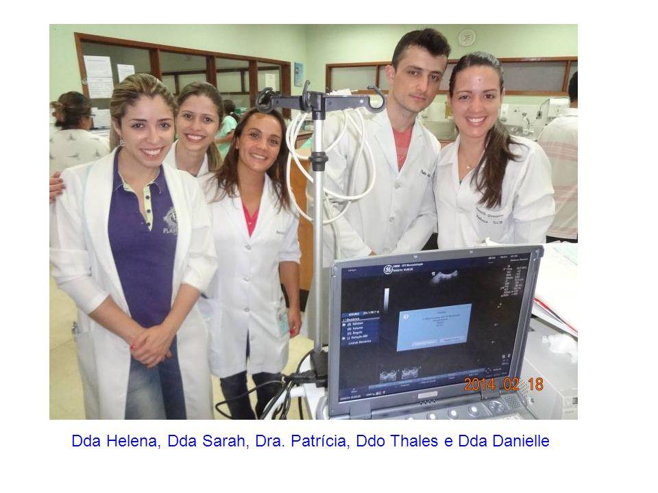 Dda Helena, Dda Sarah, Dra. Patrícia, Ddo Thales e Dda Danielle