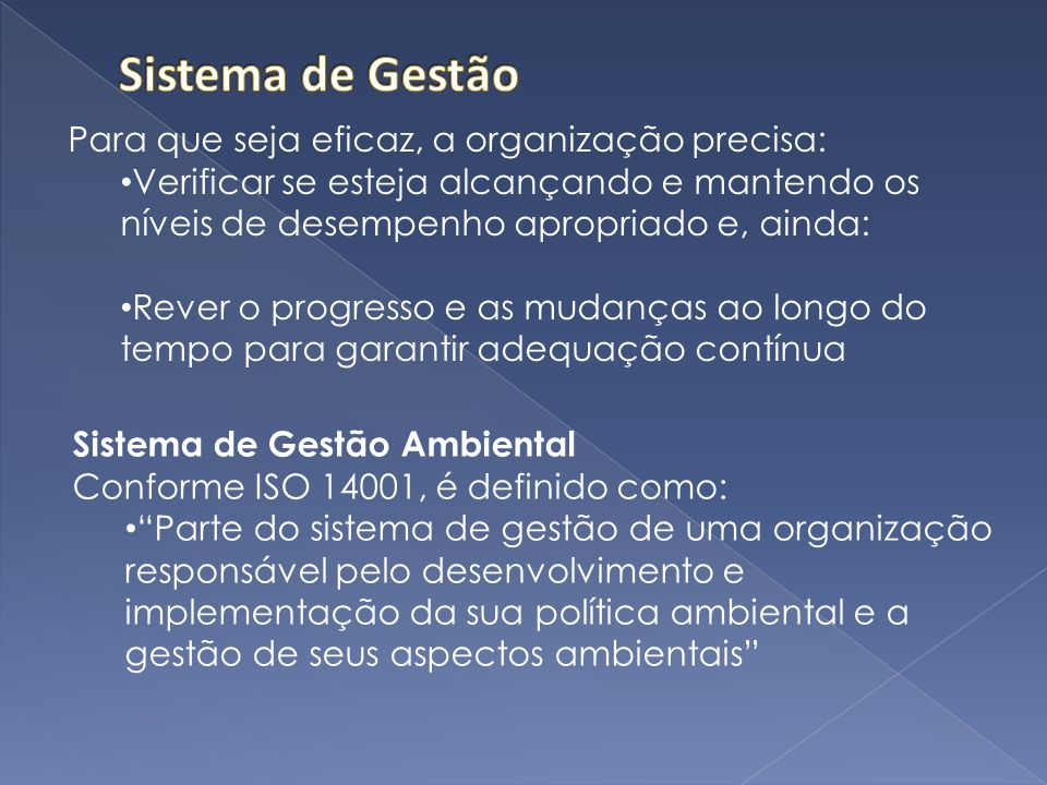 Sistema de Gestão Para que seja eficaz, a organização precisa: