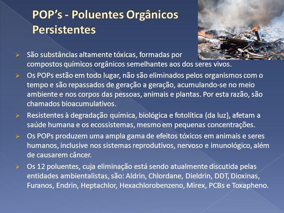 POP's - Poluentes Orgânicos Persistentes