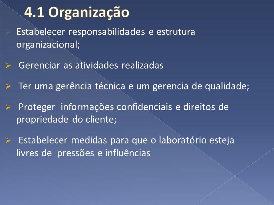 4.1 Organização Estabelecer responsabilidades e estrutura organizacional; Gerenciar as atividades realizadas.
