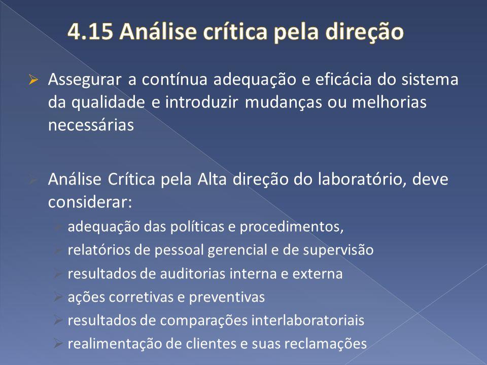 4.15 Análise crítica pela direção