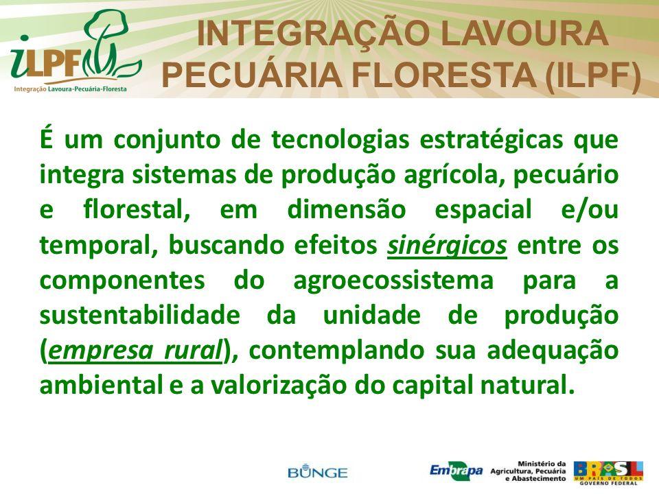 INTEGRAÇÃO LAVOURA PECUÁRIA FLORESTA (ILPF)
