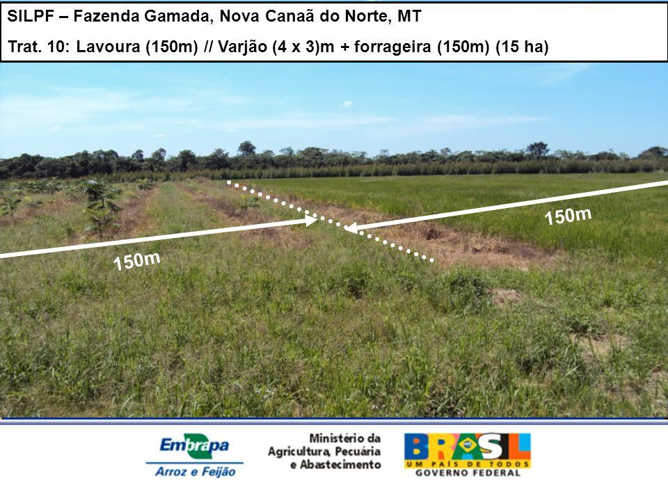 150m 150m SILPF – Fazenda Gamada, Nova Canaã do Norte, MT