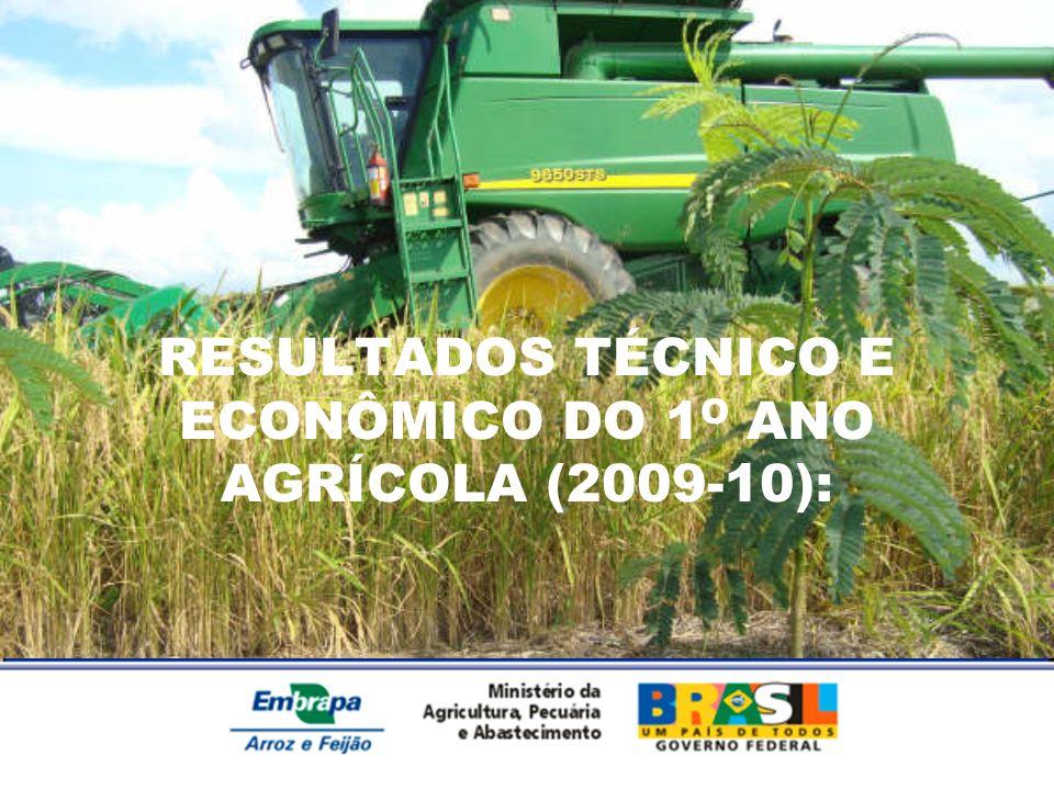 RESULTADOS TÉCNICO E ECONÔMICO DO 1O ANO AGRÍCOLA (2009-10):
