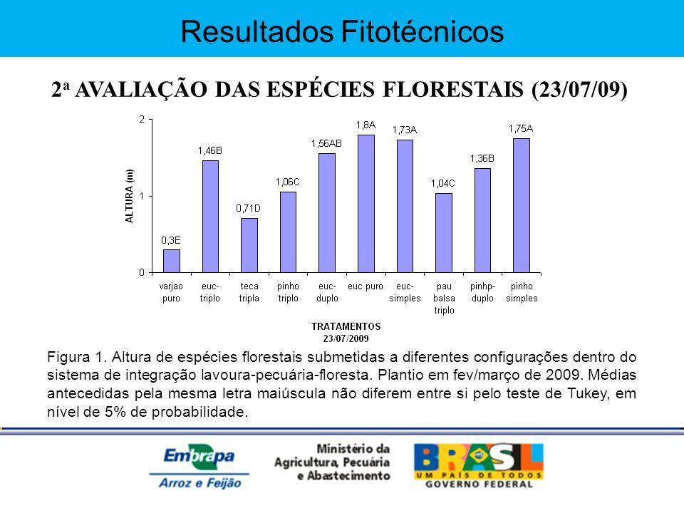 2a AVALIAÇÃO DAS ESPÉCIES FLORESTAIS (23/07/09)