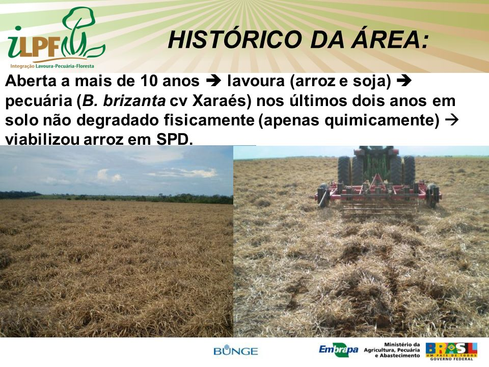 HISTÓRICO DA ÁREA: