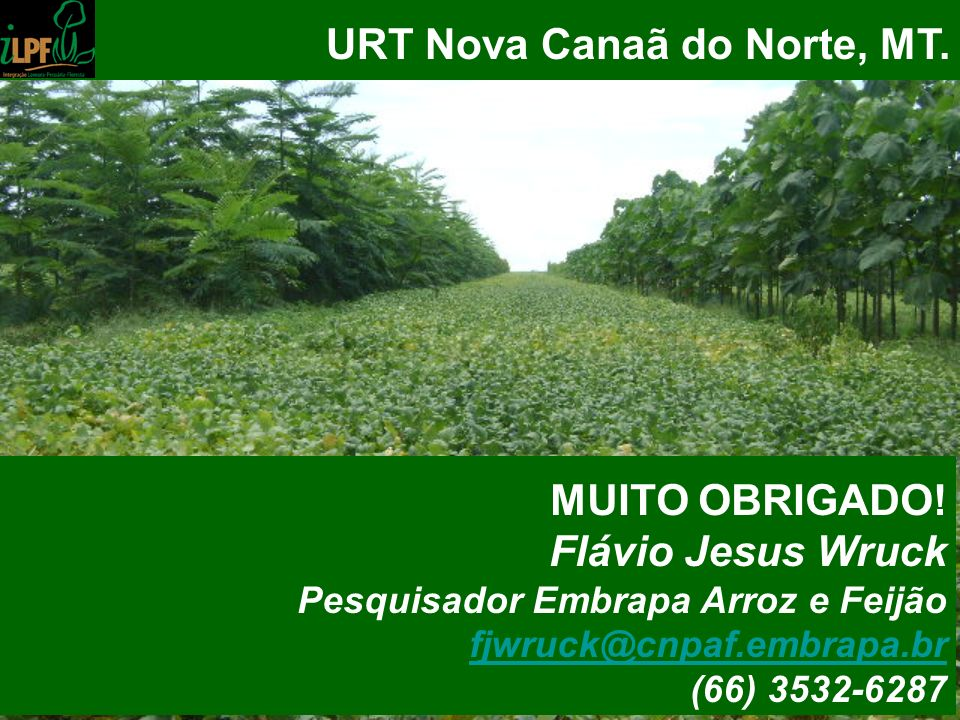 URT Nova Canaã do Norte, MT.