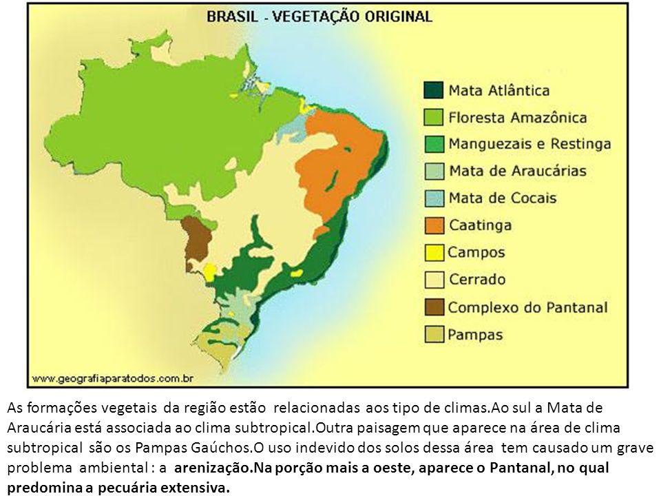 As formações vegetais da região estão relacionadas aos tipo de climas