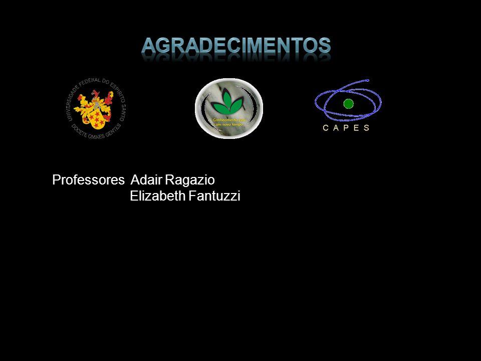 agradecimentos Professores Adair Ragazio Elizabeth Fantuzzi