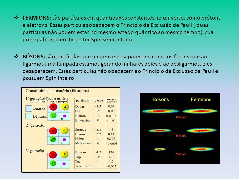 FÉRMIONS: são partículas em quantidades constantes no universo, como prótons e elétrons. Essas partículas obedecem o Princípio de Exclusão de Pauli ( duas partículas não podem estar no mesmo estado quântico ao mesmo tempo), sua principal característica é ter Spin semi-inteiro.
