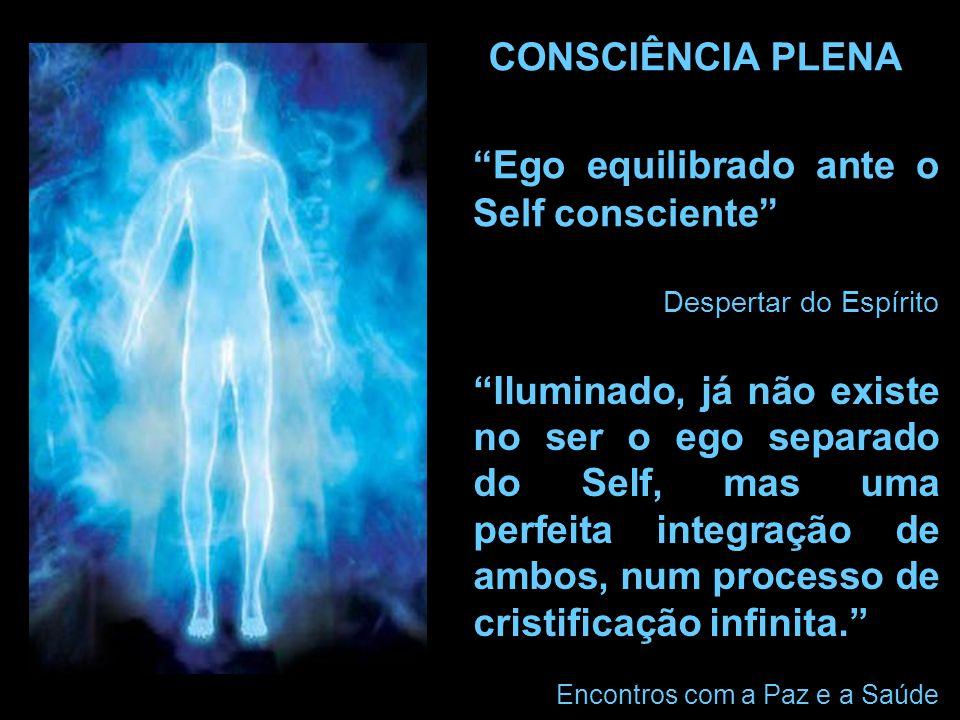 Ego equilibrado ante o Self consciente