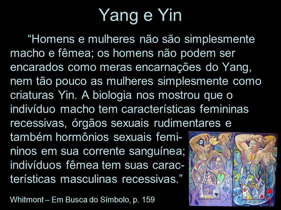 Yang e Yin