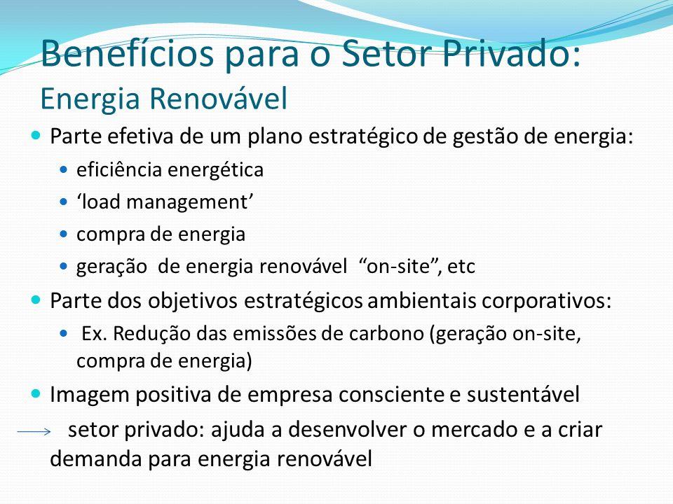 Benefícios para o Setor Privado: Energia Renovável