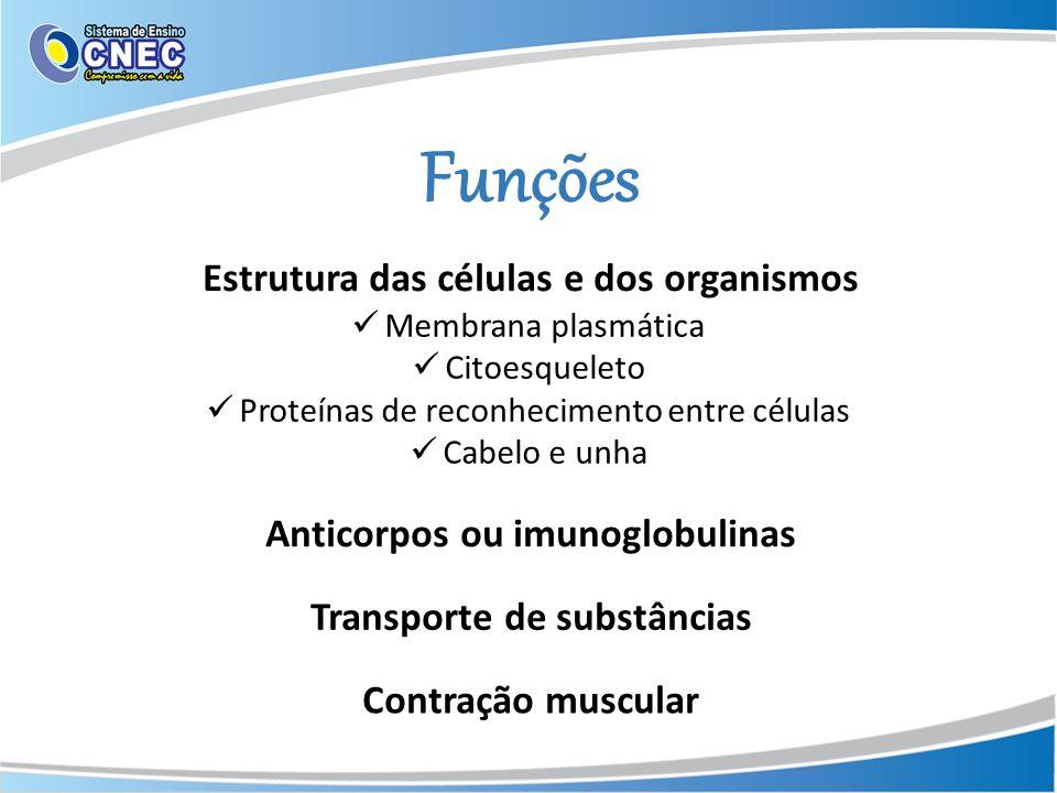 Funções Estrutura das células e dos organismos