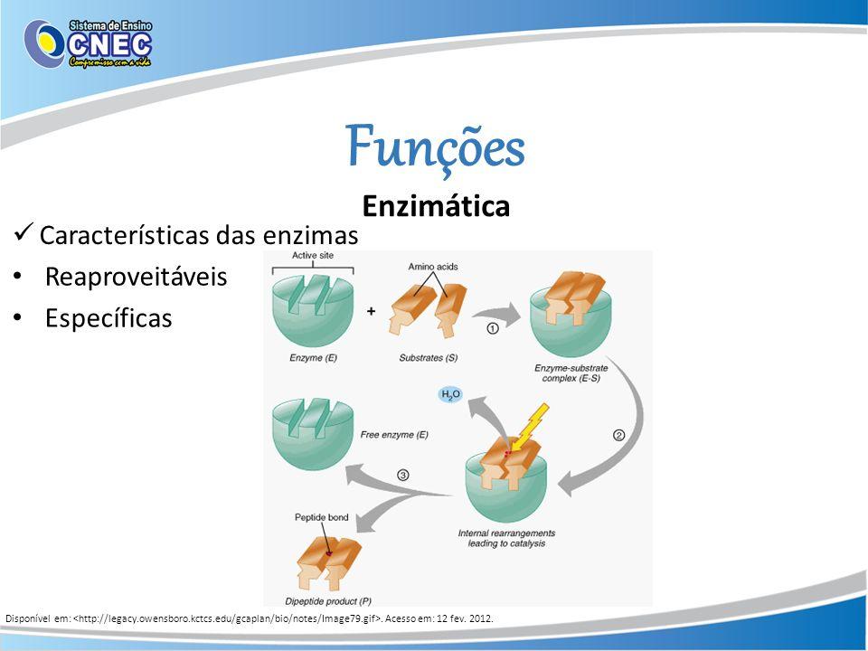 Funções Enzimática Características das enzimas Reaproveitáveis