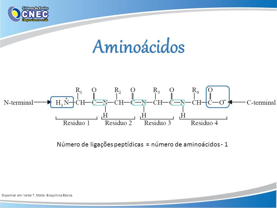 Número de ligações peptídicas = número de aminoácidos - 1