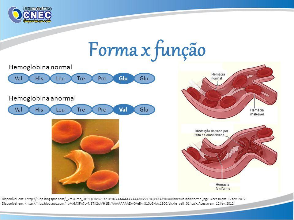 Forma x função Hemoglobina normal Hemoglobina anormal Val His Leu Tre