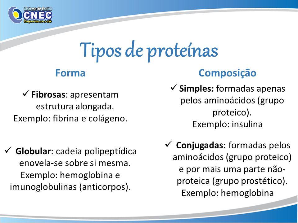 Tipos de proteínas Forma Composição