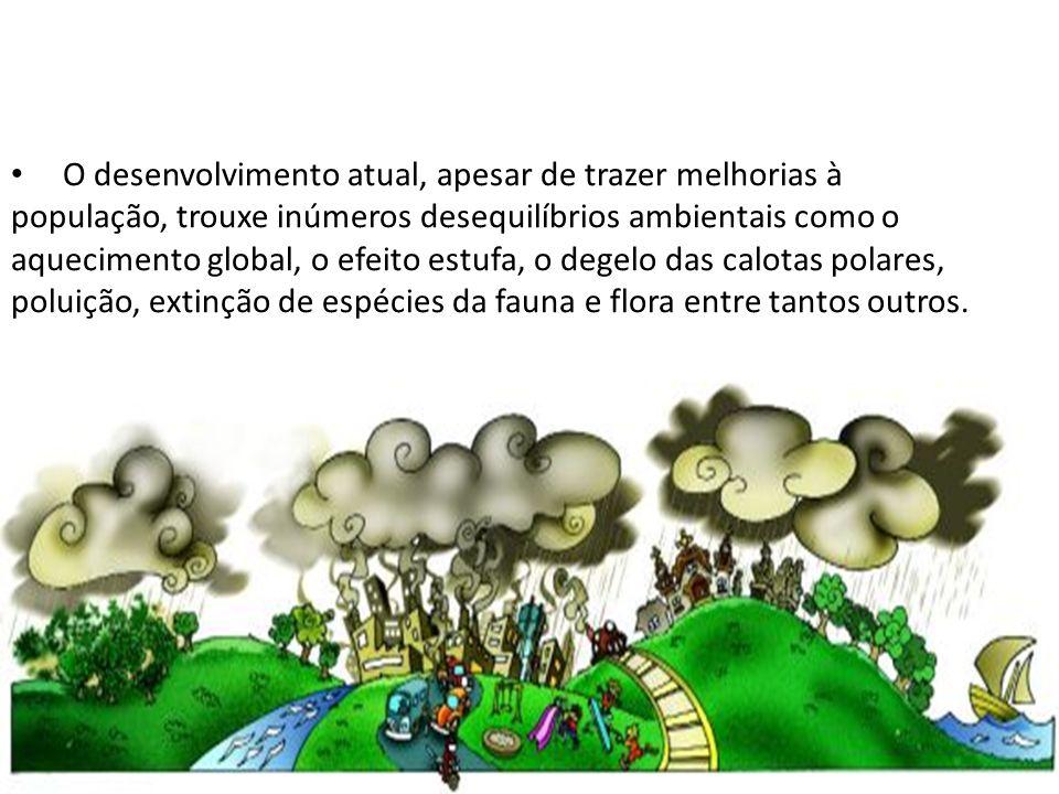 O desenvolvimento atual, apesar de trazer melhorias à população, trouxe inúmeros desequilíbrios ambientais como o aquecimento global, o efeito estufa, o degelo das calotas polares, poluição, extinção de espécies da fauna e flora entre tantos outros.