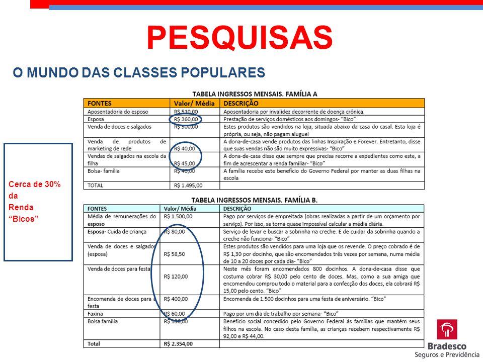 PESQUISAS O MUNDO DAS CLASSES POPULARES Cerca de 30% da Renda Bicos