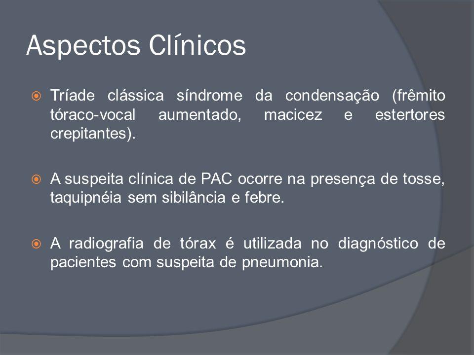Aspectos Clínicos Tríade clássica síndrome da condensação (frêmito tóraco-vocal aumentado, macicez e estertores crepitantes).