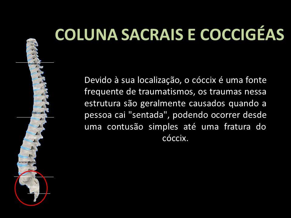 COLUNA SACRAIS E COCCIGÉAS