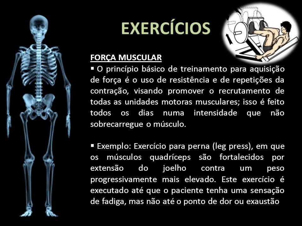 EXERCÍCIOS FORÇA MUSCULAR