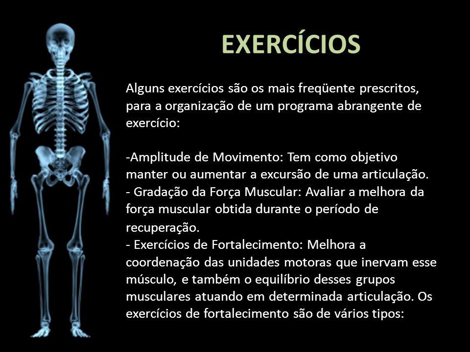 EXERCÍCIOS Alguns exercícios são os mais freqüente prescritos, para a organização de um programa abrangente de exercício: