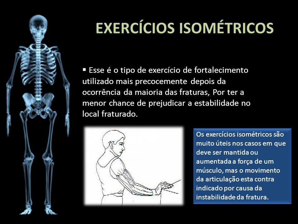 EXERCÍCIOS ISOMÉTRICOS