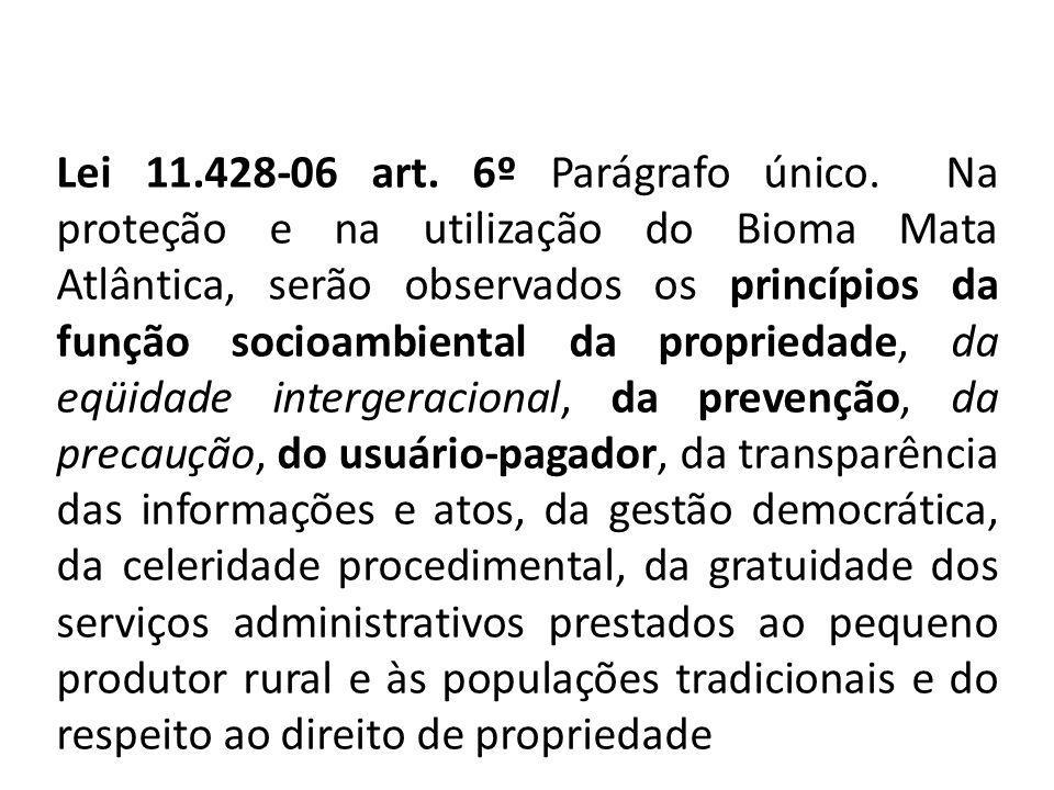 Lei 11. 428-06 art. 6º Parágrafo único