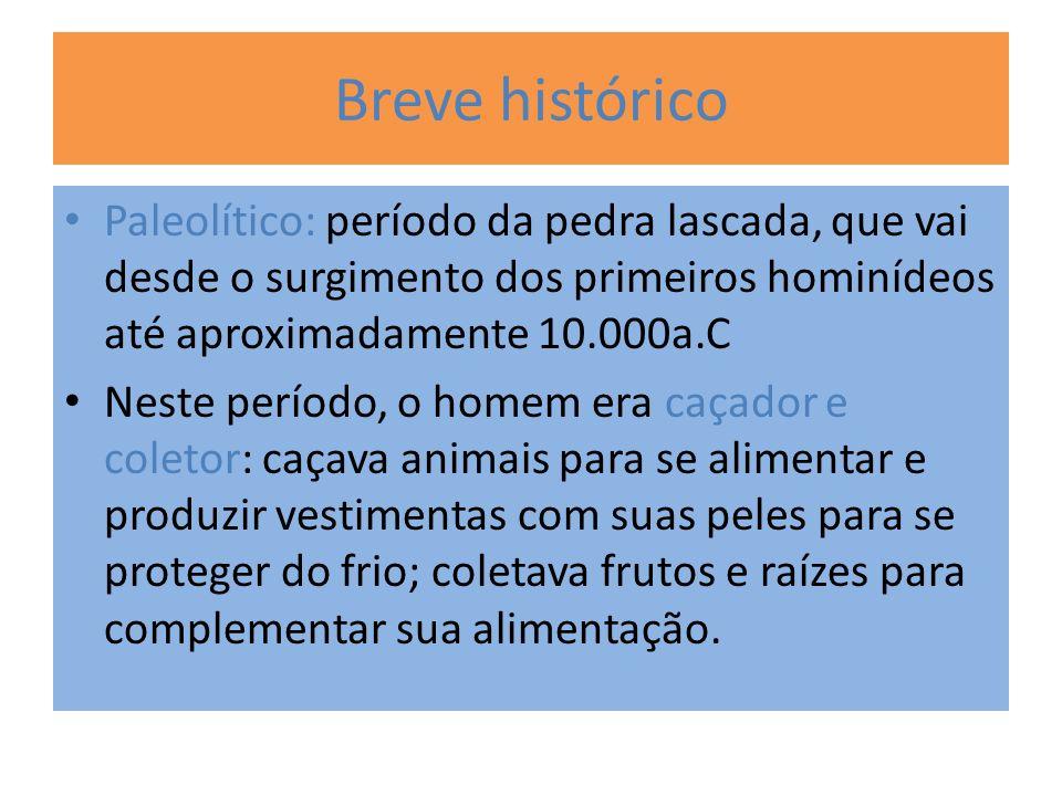 Breve histórico Paleolítico: período da pedra lascada, que vai desde o surgimento dos primeiros hominídeos até aproximadamente 10.000a.C.