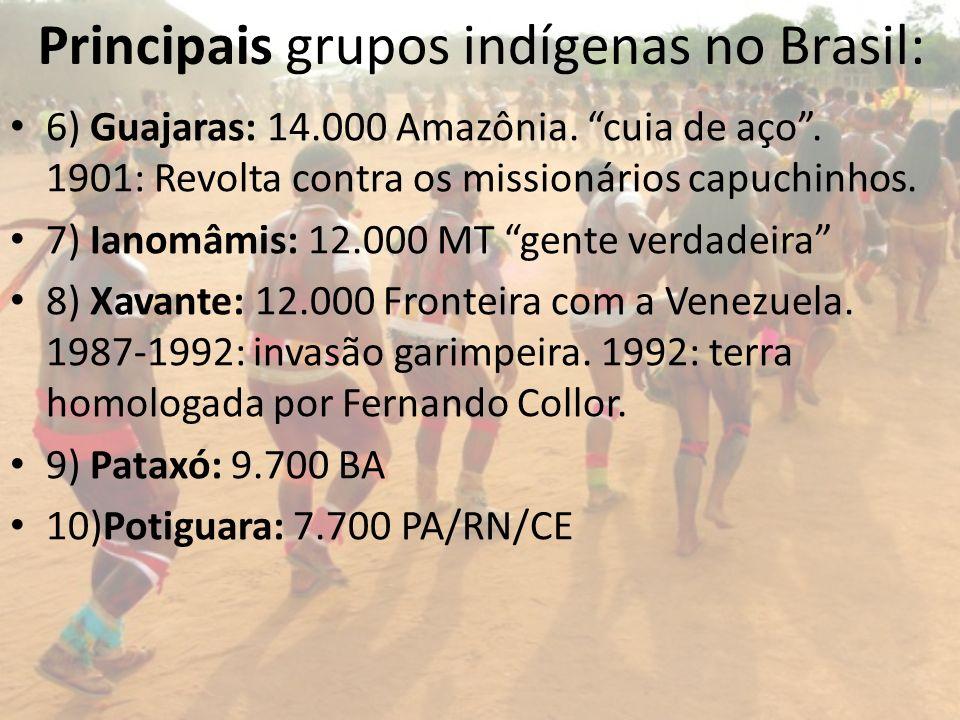 Principais grupos indígenas no Brasil: