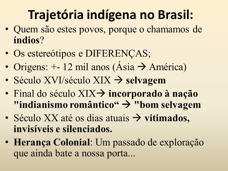 Trajetória indígena no Brasil: