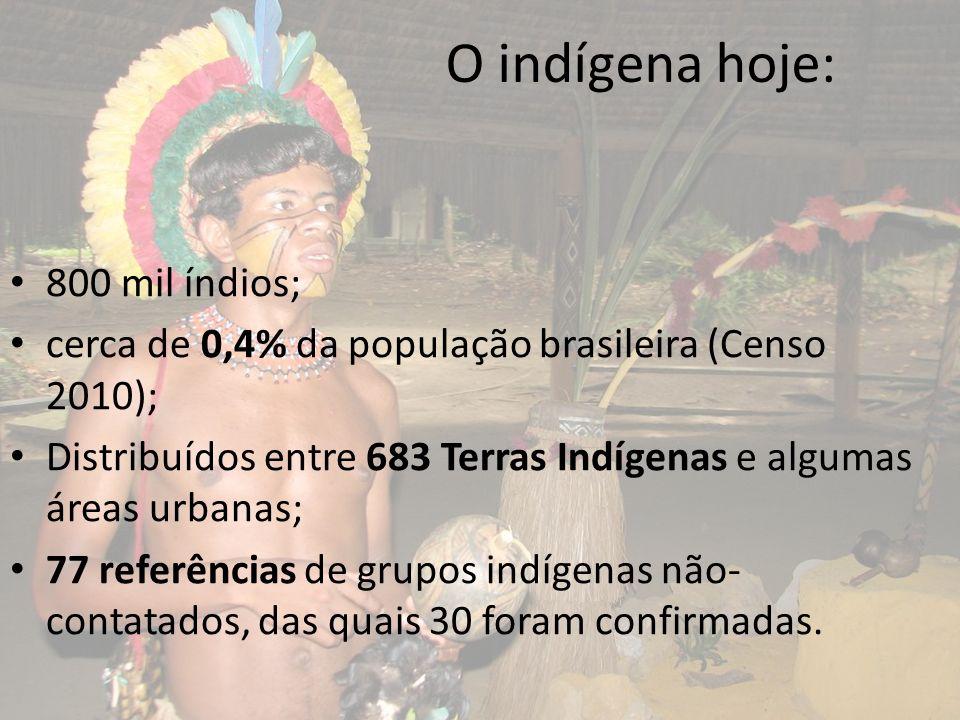 O indígena hoje: 800 mil índios;