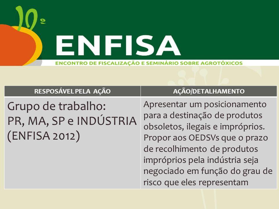 Grupo de trabalho: PR, MA, SP e INDÚSTRIA (ENFISA 2012)