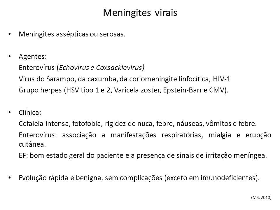 Meningites virais Meningites assépticas ou serosas. Agentes: