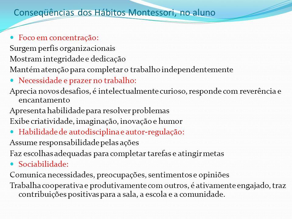 Conseqüências dos Hábitos Montessori, no aluno
