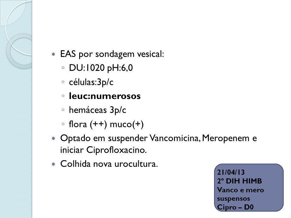 EAS por sondagem vesical: DU:1020 pH:6,0 células:3p/c leuc:numerosos