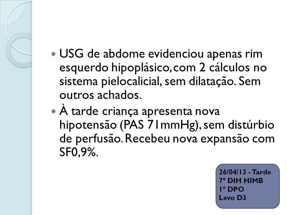 USG de abdome evidenciou apenas rim esquerdo hipoplásico, com 2 cálculos no sistema pielocalicial, sem dilatação. Sem outros achados.