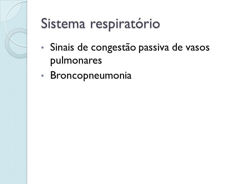 Sistema respiratório Sinais de congestão passiva de vasos pulmonares
