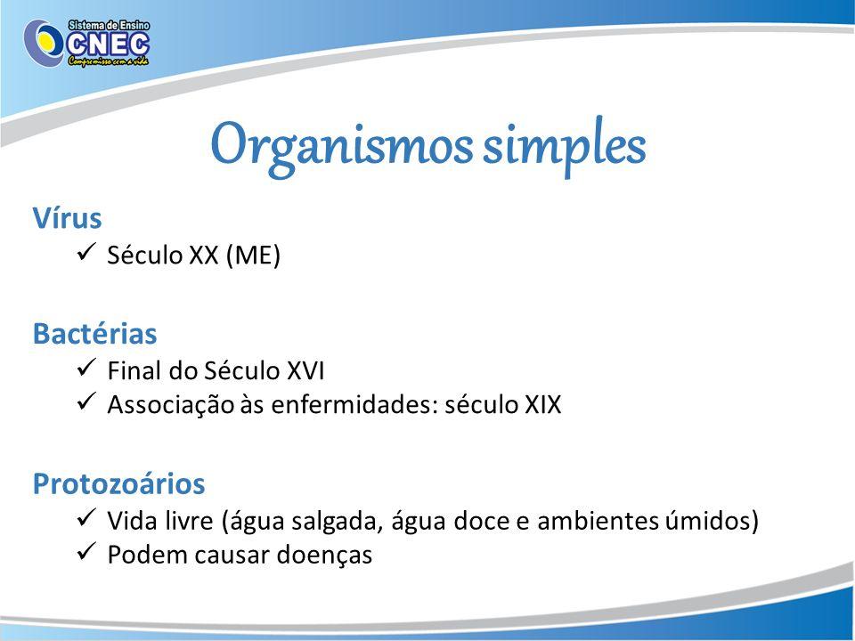 Organismos simples Vírus Bactérias Protozoários Século XX (ME)